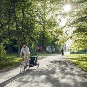 Thule Chariot Lite - Remorque vélo enfant Balade - Tête à Casque
